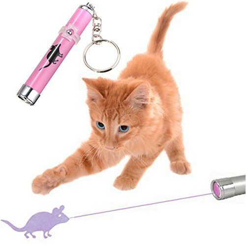Laser Pointer Pen-Feline Toys