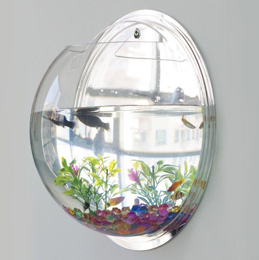 Wall mounted fish tank acrylic bowl life changing products for Acrylic fish bowl