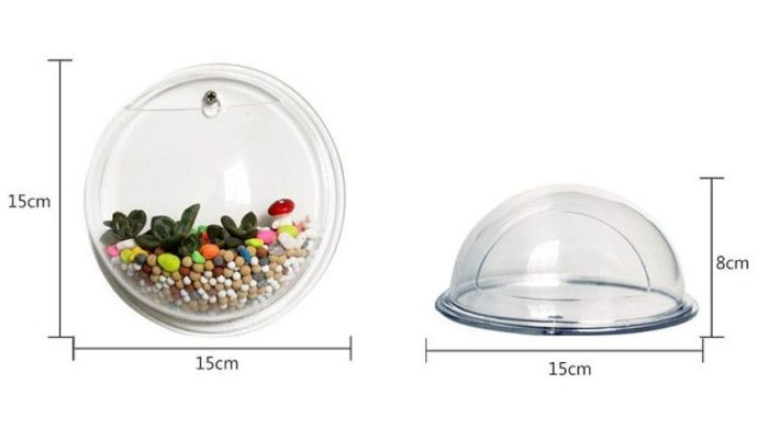 Wall Mounted Fish Bowl-Acrylic