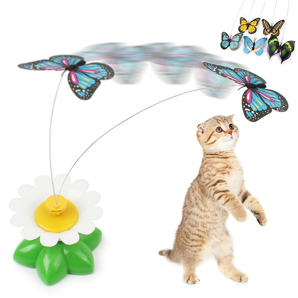 Cat Toy-Butterfly
