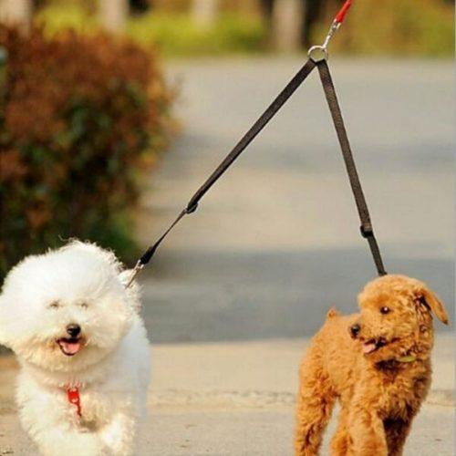 Dual Walking Leash