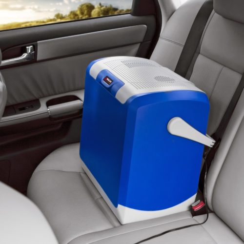 Mini Car Fridge