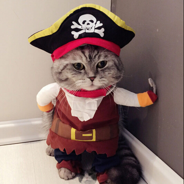 Pet Clothes-Jack Sparrow Costume