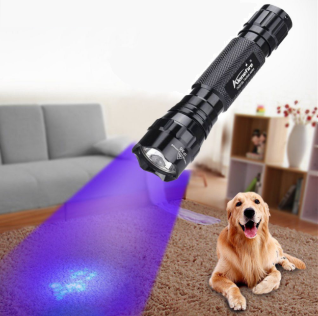 Portable Led Ultraviolet Flashlight