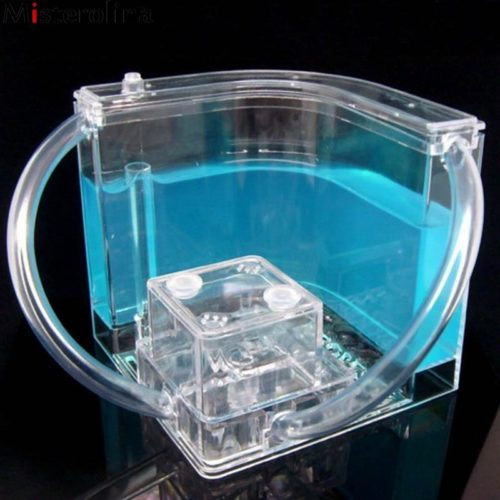 Gel Ant Farm