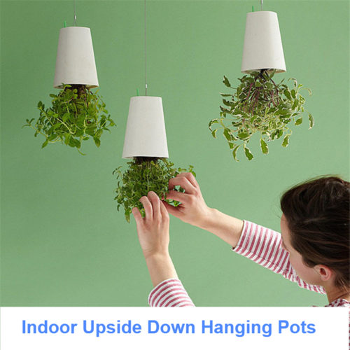 Upside Down Hanging Flower Pot