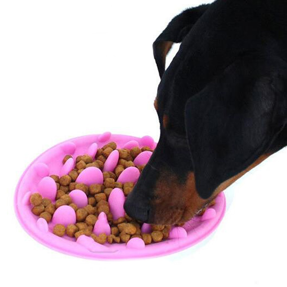 Pet Silicone Bowl Slow Feeder Life Changing Products
