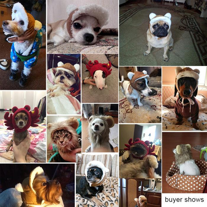 Pet Costumes Headwear