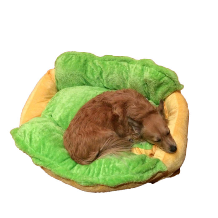 'Hot Dog' Cushion Pet Bed