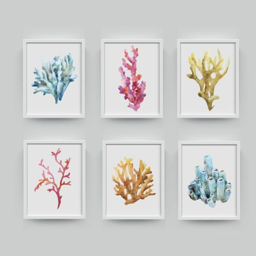 Corals Wall Art Painting