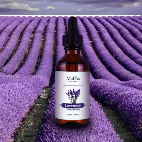 Aromatherapy Pure Organic Lavender Essential Oil