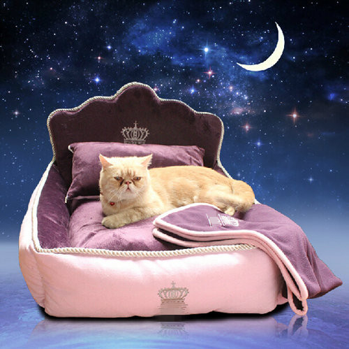 Washable Luxury And Fancy Elevated Pet Beds