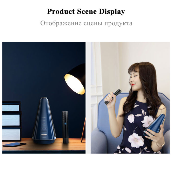 Wireless Home Karaoke Microphone Set