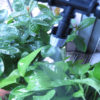 Portable Garden Irrigation System Set