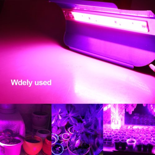 Plant Light LED Portable Grow Light Device