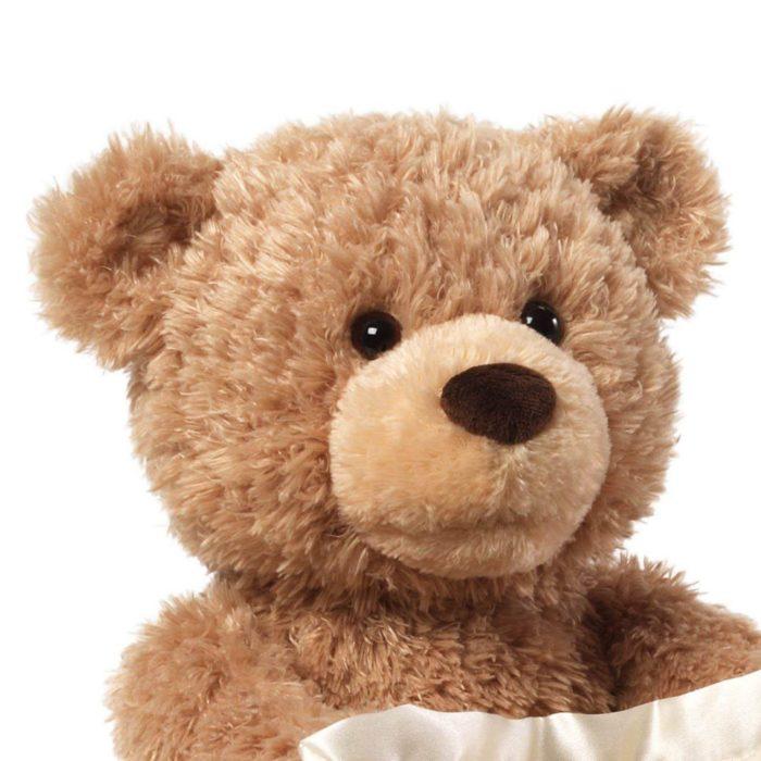 Adorable Talking Peek A Boo Bear