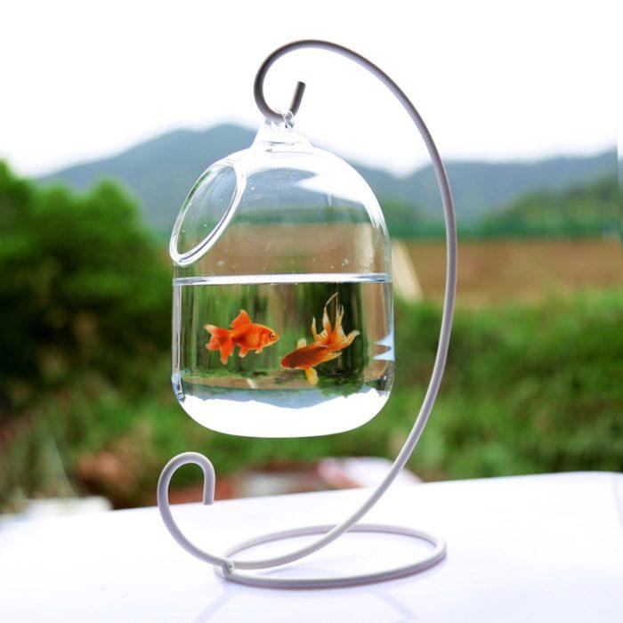 Hanging Glass Fish Bowl Aquarium Tank