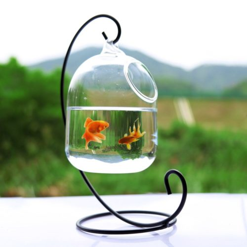 Hanging Glass Fish Bowl Aquarium Tank