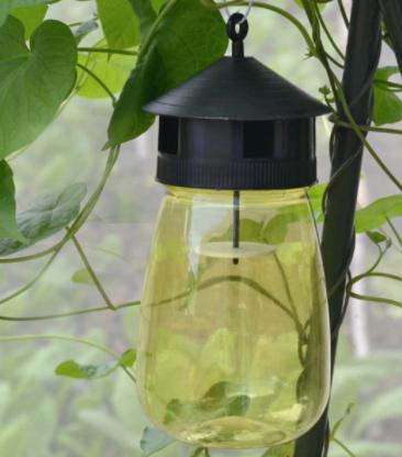 Fruit Fly Trap Hanging Bottle