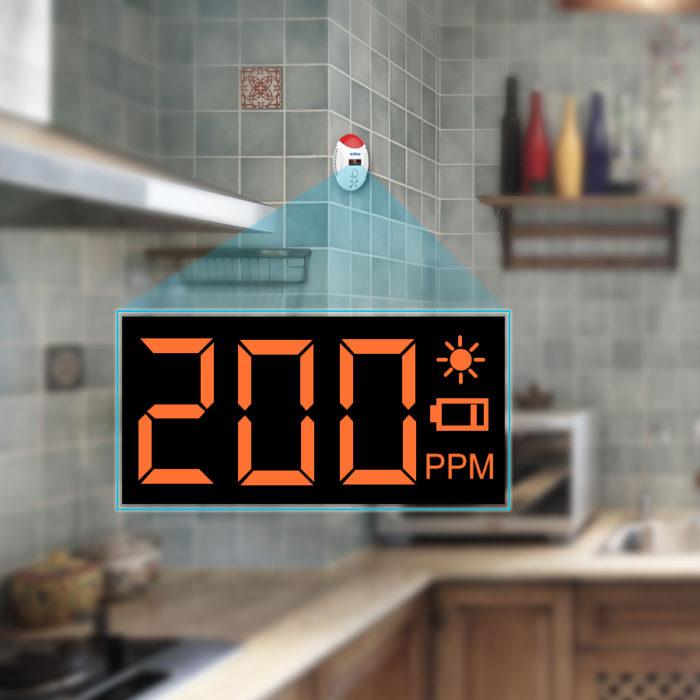 Carbon Monoxide Detector Alarm