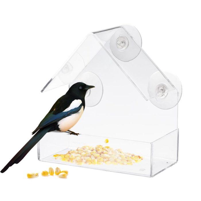 Bird Feeder Transparent Glass Sucker