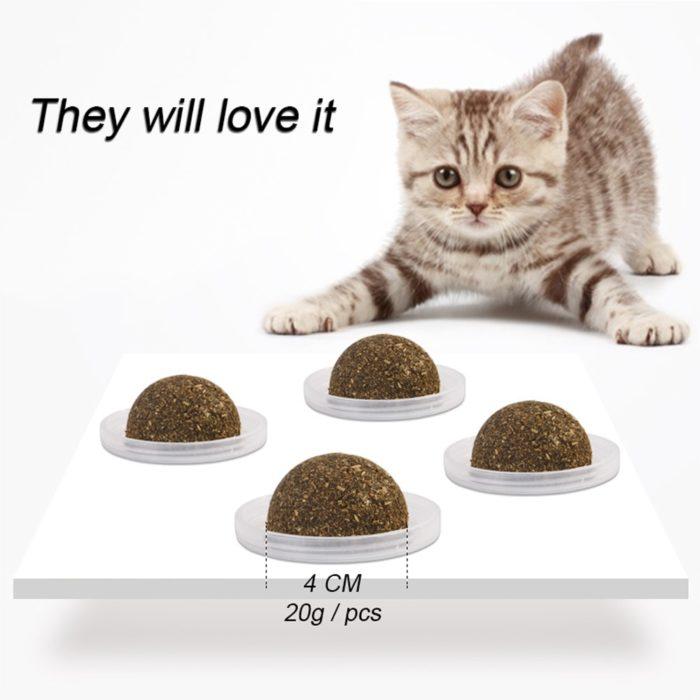Cat Treat Healthy Catnip Balls