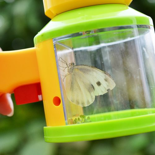 Bug Catcher Magnifier Science Toy