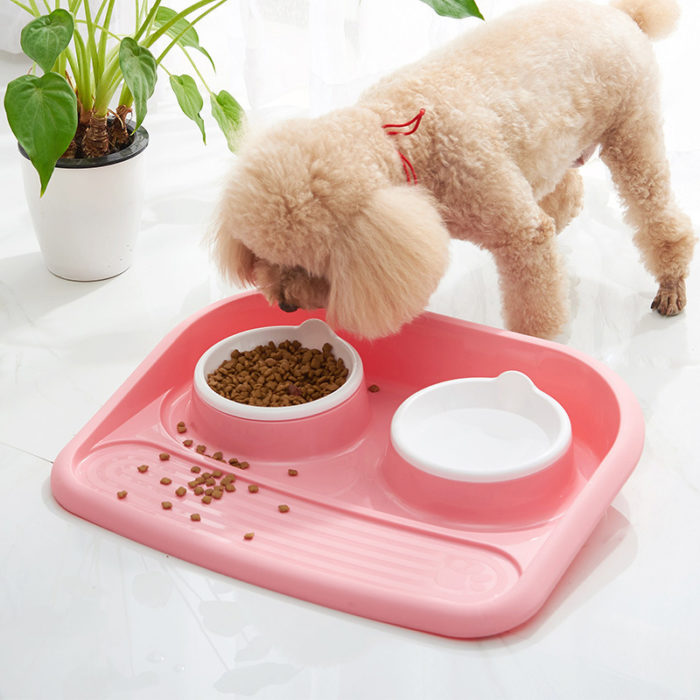 Dog Feeding Station Pet Food Bowl