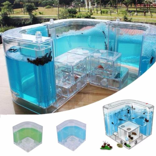 Ant Farms Gel Cage Box Kit