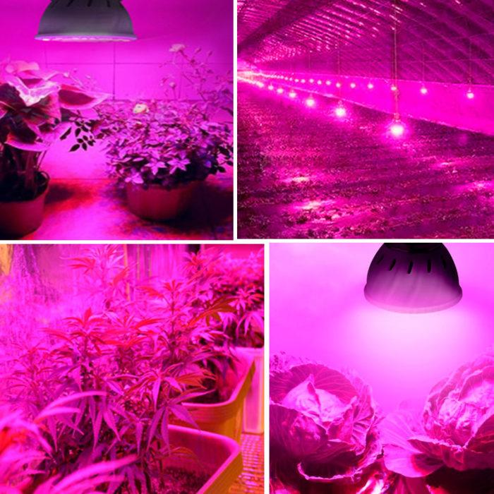 Plant Grow Lights Artificial Sunlight
