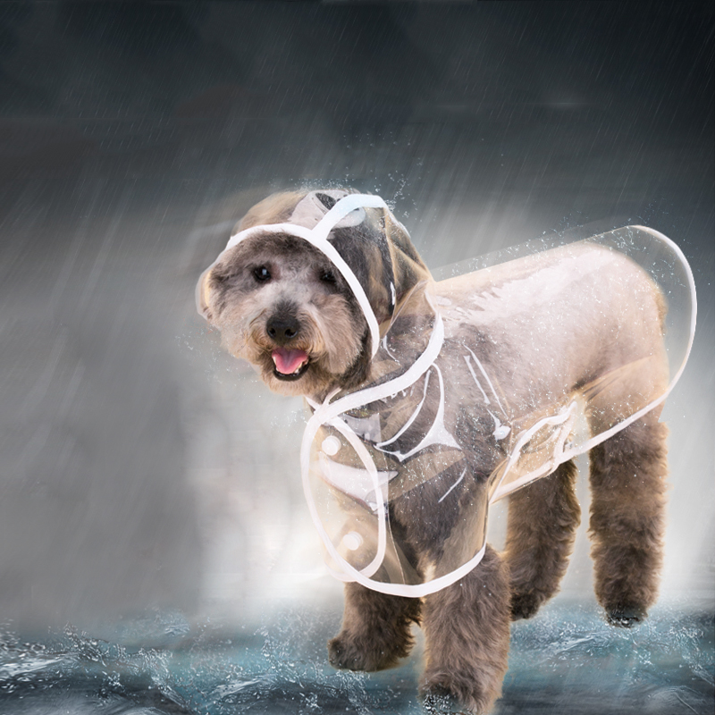Transparent Waterproof Dog Rain Coat