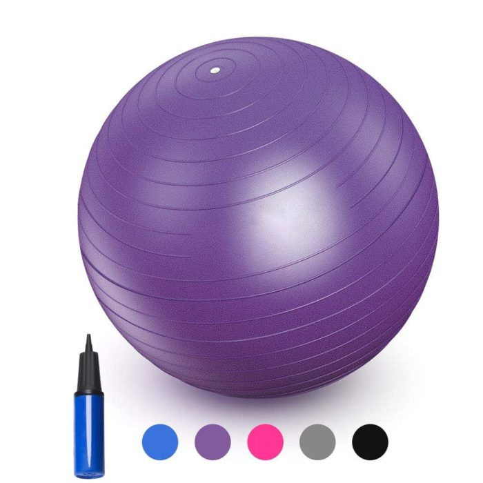 Exercise Ball With Free Air Pump