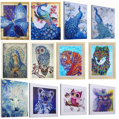 Diamond Art Kits Partial Painting