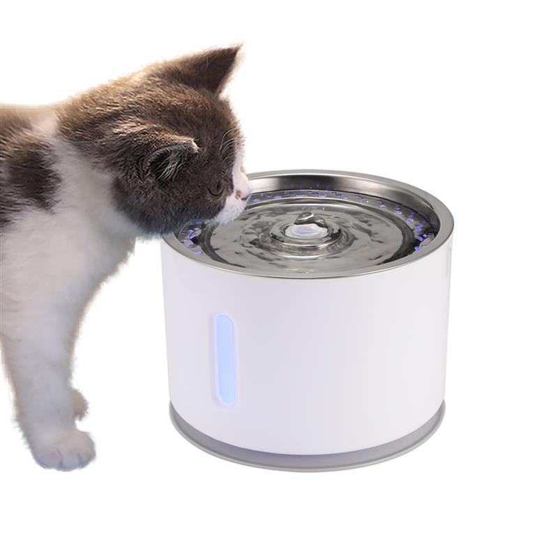 Cat Drinking Fountain Electric Water Dispenser Life