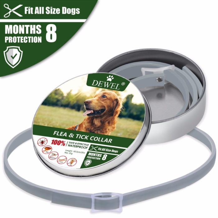 Flea Collar Dog Leash