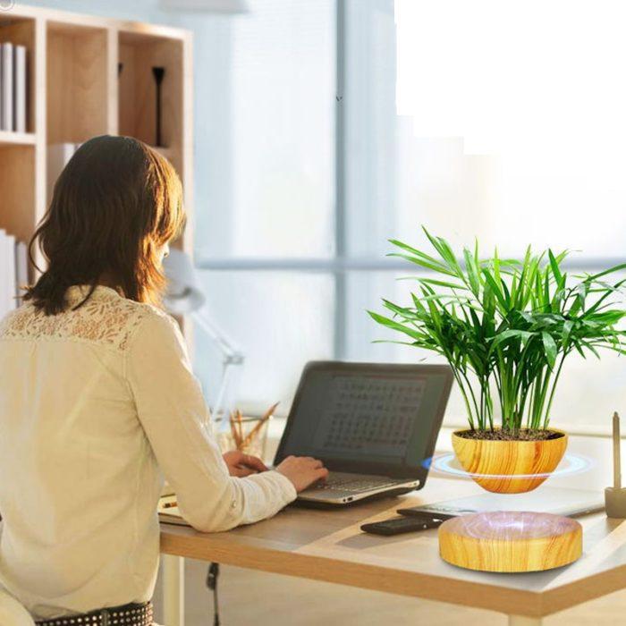 Decorative Plants Magnetic Levitation Pot