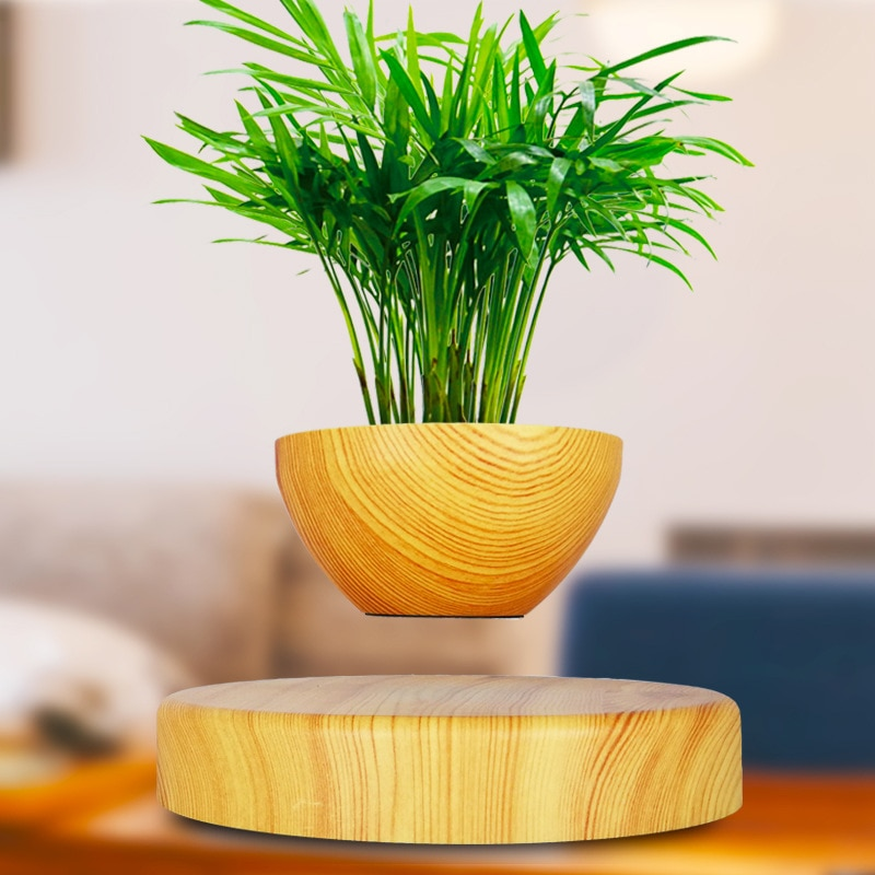 Decorative Plants Magnetic Levitation