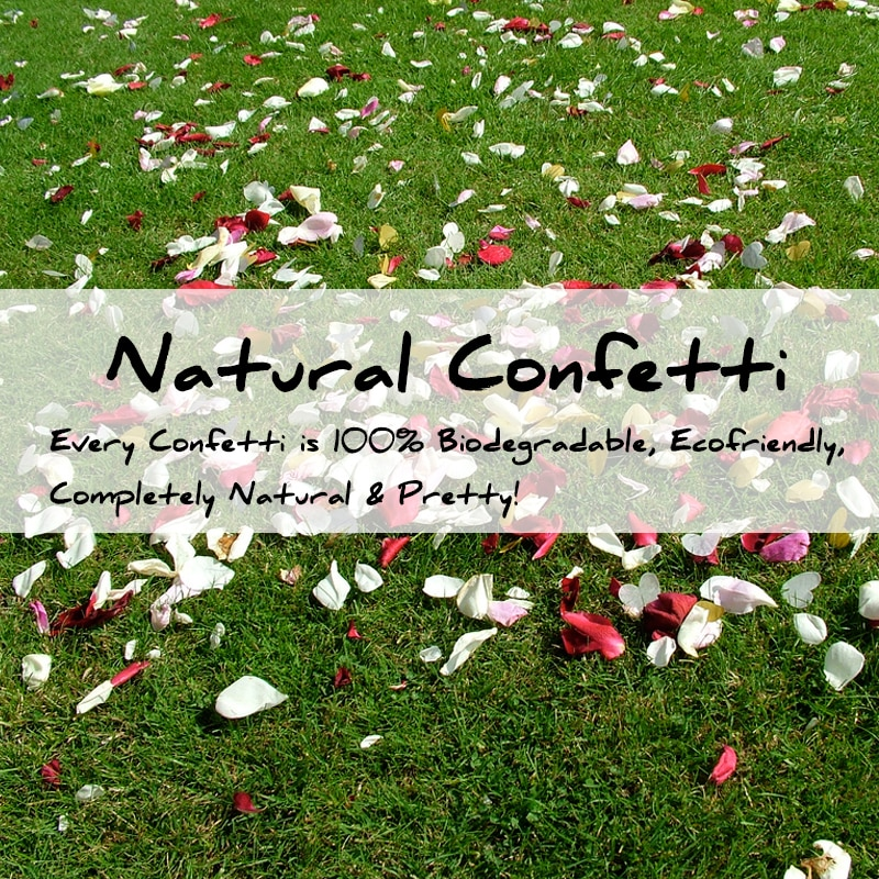 Wedding Confetti Natural Flower Petals