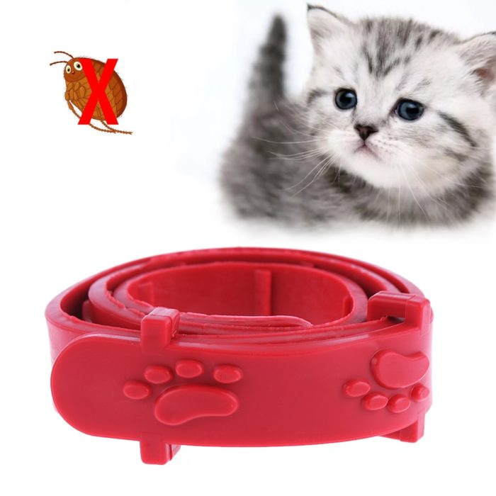 Flea and Tick Collar Pet Supplies