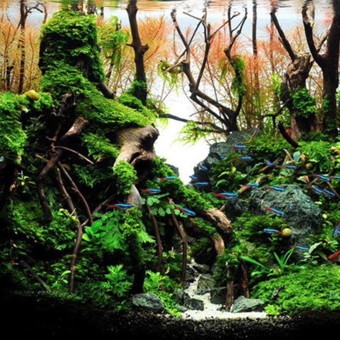 Aquarium Driftwood Fish Tank Decorative