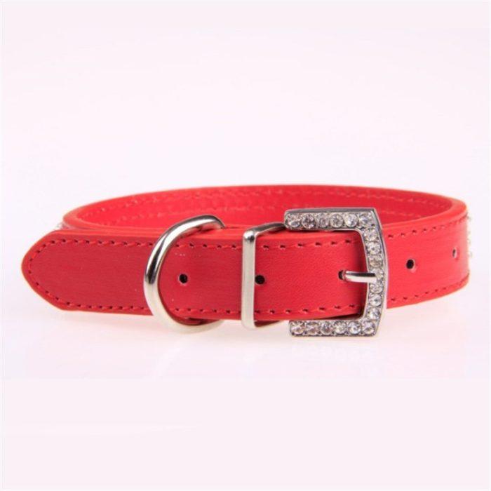 Pet Collars Neckband Accessory