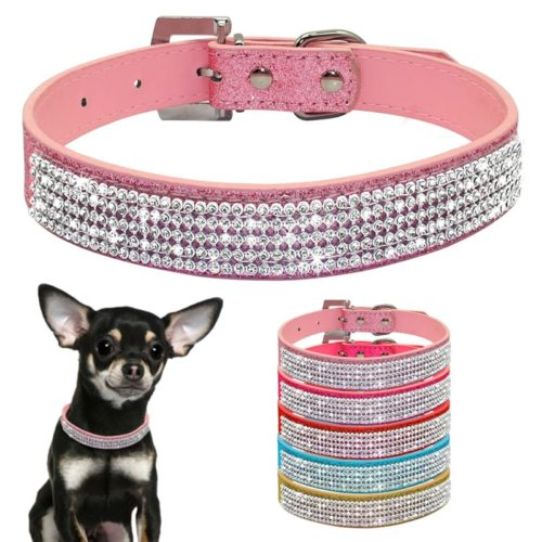 Pet Collars Neckband Accessory