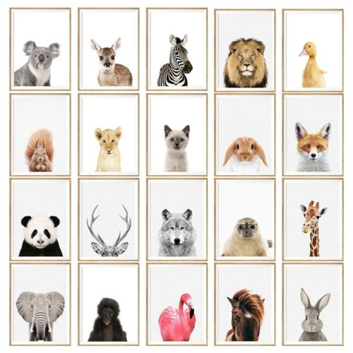 Animal Paintings Cotton Canvas