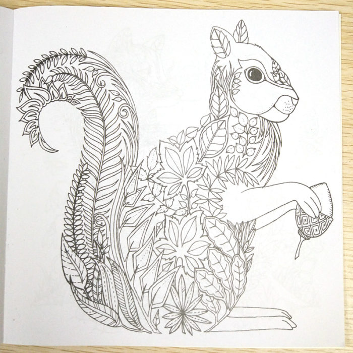 Colouring Books Anti-Stress Material (24 Page)