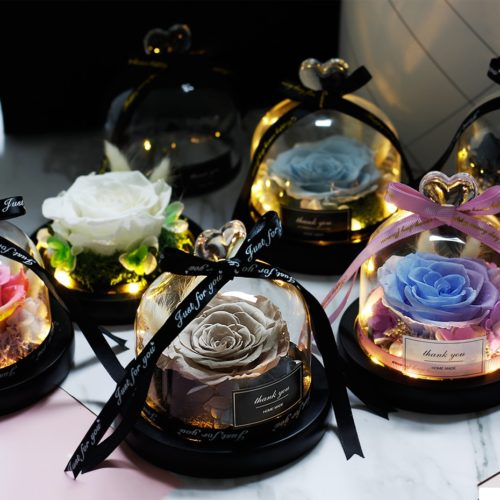 Preserved Roses Light-Up Glass Dome