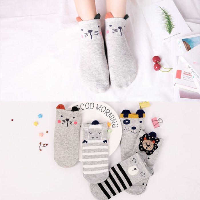 Ladies Socks Cute Footwear (5 Pairs)