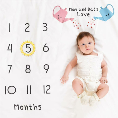 Baby Month Blanket Milestone Backdrop