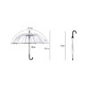 Transparent Umbrella Semi Automatic Parasol