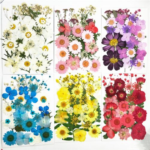 Pressed Flowers Artificial Decorations