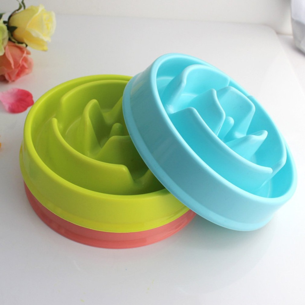 Image result for Slow Feeder Bowl Pet Accessories
